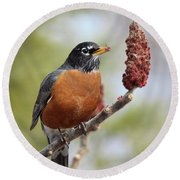Robin And Sumac Round Beach Towel