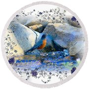 Round Beach Towel featuring the photograph Robin by Athala Carole Bruckner
