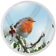 Robin In The Snow Round Beach Towel