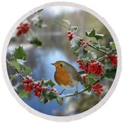 Robin On Holly Branch Round Beach Towel