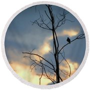 Round Beach Towel featuring the photograph Robin Watching Sunset After The Storm by Sandi OReilly