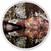 Rock Face Reflected Round Beach Towel