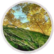 Round Beach Towel featuring the photograph Rock Of Ages by Jeff Folger
