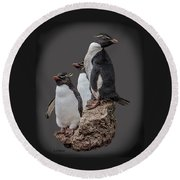 Rockhopper Penguins Round Beach Towel