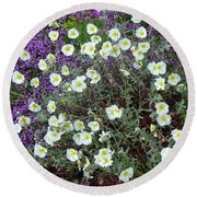 Round Beach Towel featuring the photograph Rockrose And Thyme by Phil Banks