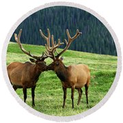 Round Beach Towel featuring the photograph Rocky Mountain Elk 2 by Marie Leslie