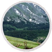 Round Beach Towel featuring the photograph Rocky Mountain Elk 5 by Marie Leslie