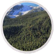 Round Beach Towel featuring the photograph Rocky Mountain Evergreen Landscape by Dan Sproul