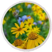 Rocky Mountain Wildflowers Round Beach Towel