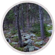 Round Beach Towel featuring the photograph Rocky Nature Landscape by James BO Insogna