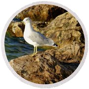 Rocky Waters Round Beach Towel