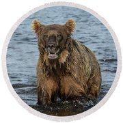 Rogue Bear  Round Beach Towel
