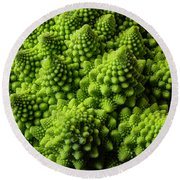 Romanesco Broccoli Round Beach Towel by Garry Gay