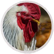 Rooster Eye To Eye Round Beach Towel