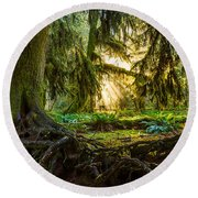 Roots And Light Round Beach Towel