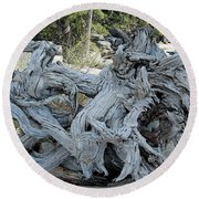Roots In Nature Round Beach Towel