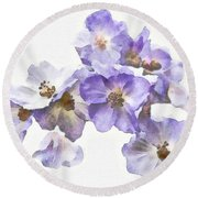Rosa Canina - Watercolour Round Beach Towel