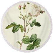 Rosa Centifolia Mutabilis Round Beach Towel