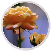 Rose 1156 H_2 Round Beach Towel