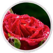 Round Beach Towel featuring the photograph Rose After Rain by Leif Sohlman