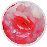 Rose After The Rain Round Beach Towel