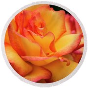 Rose Beauty Round Beach Towel by Jean Noren