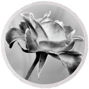 Rose Bloom In B W Round Beach Towel