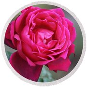 Rose Round Beach Towel