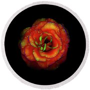Rose Flower Color Abstract Round Beach Towel