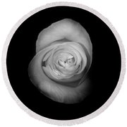 Rose From The Shadows Round Beach Towel