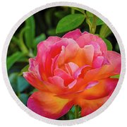 Rose In The Evening Round Beach Towel