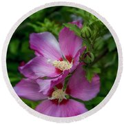 Rose Of Sharon Hibiscus Vertical Round Beach Towel by Garry McMichael