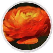 Rose Of Spring Round Beach Towel