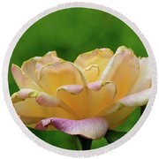 Round Beach Towel featuring the photograph Rose Open Yellow Pink by Larry Bishop