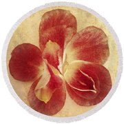 Round Beach Towel featuring the photograph Rose Petals by Linda Sannuti