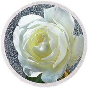 Round Beach Towel featuring the photograph Rose With Some Sparkle by Terence Davis
