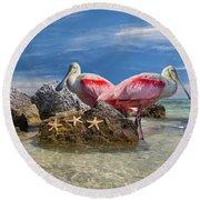 Roseate Spoonbill Florida Keys Round Beach Towel