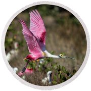 Roseate Spoonbill Flying Round Beach Towel