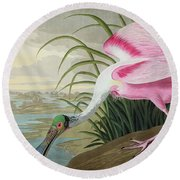Roseate Spoonbill Round Beach Towel by John James Audubon