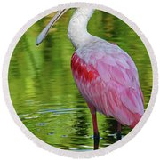 Roseate Spoonbill Portrait Round Beach Towel by Larry Nieland