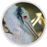 Roseate Spoonbill Profile Round Beach Towel