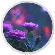 Round Beach Towel featuring the photograph Roses With Evening Tint by Lance Sheridan-Peel