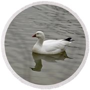 Round Beach Towel featuring the photograph Ross's Goose by Sandy Keeton