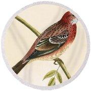 Rosy Bullfinch Round Beach Towel