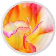 Rosy Curves Round Beach Towel by Teri Virbickis