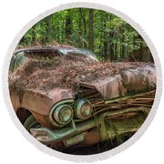 Rotting Classic In Color Round Beach Towel