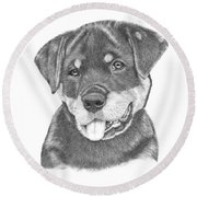 Round Beach Towel featuring the drawing Rottweiler Puppy- Chloe by Patricia Hiltz