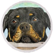 Rottweiler's Sweet Face 2 Round Beach Towel by Megan Cohen