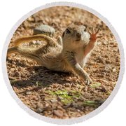 Round-tailed Ground Squirrel Stretch Round Beach Towel