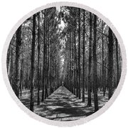 Rows Of Pines Vertical Round Beach Towel
